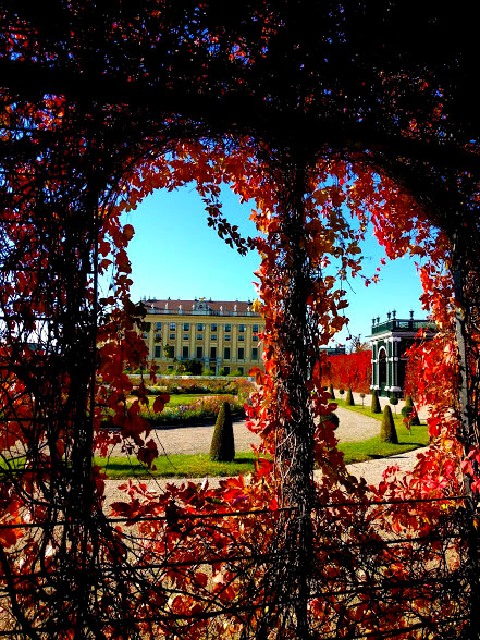 Foliage Schönbrunn