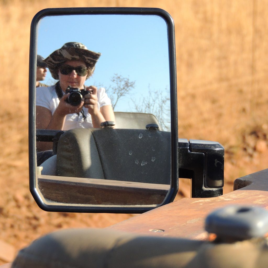 attimi di safari