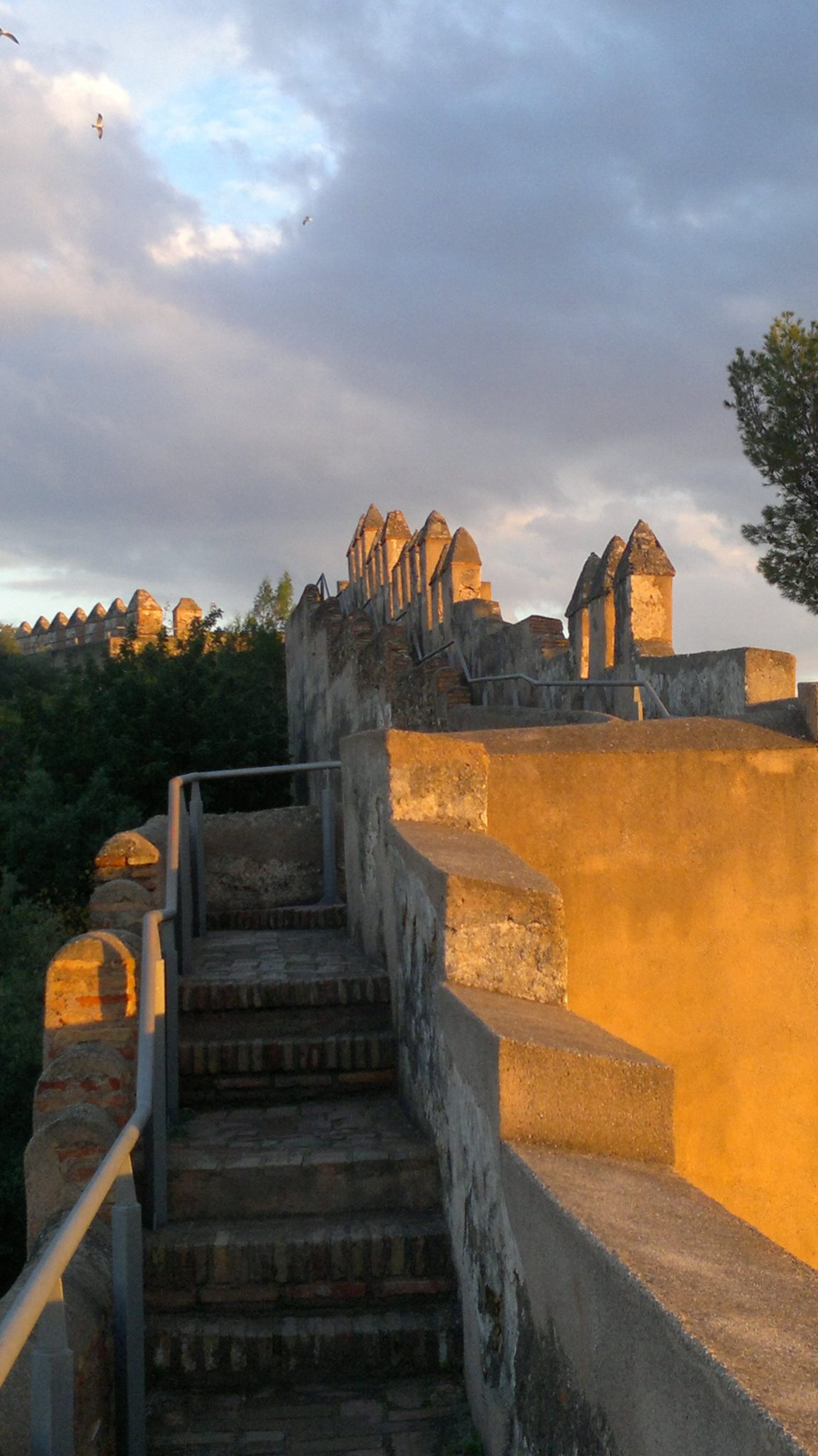 Cosa vedere a Malaga: Castello di Gibralfaro