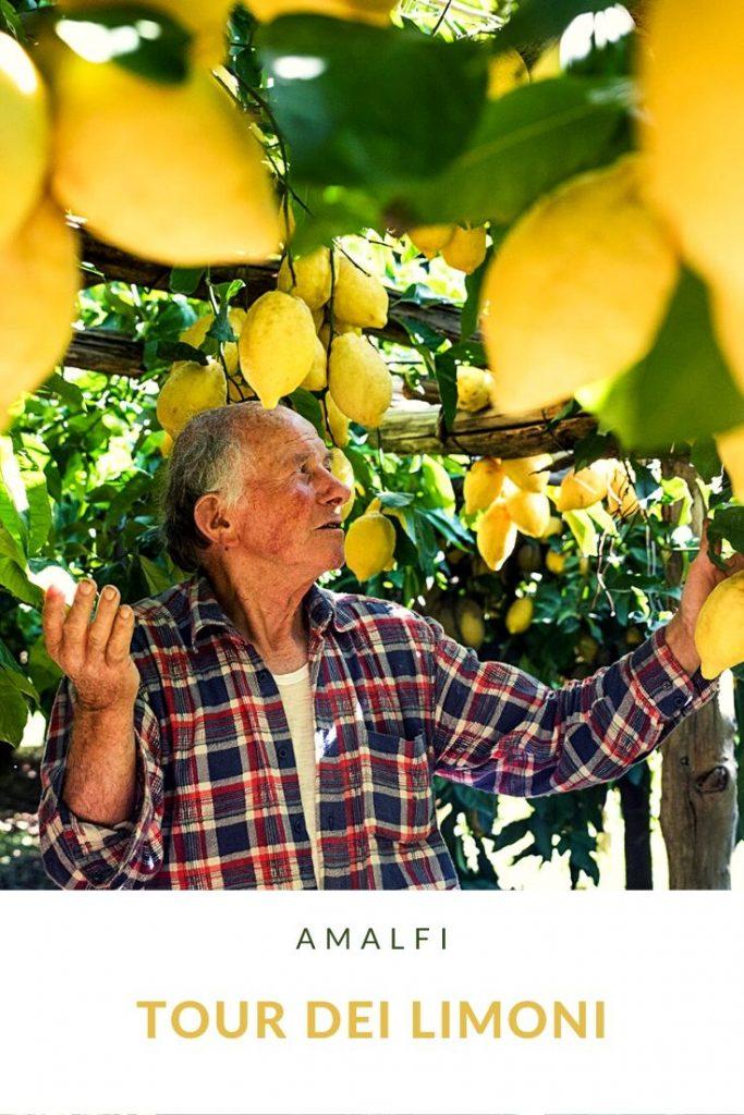 Tour limoni 1 tour dei limoni