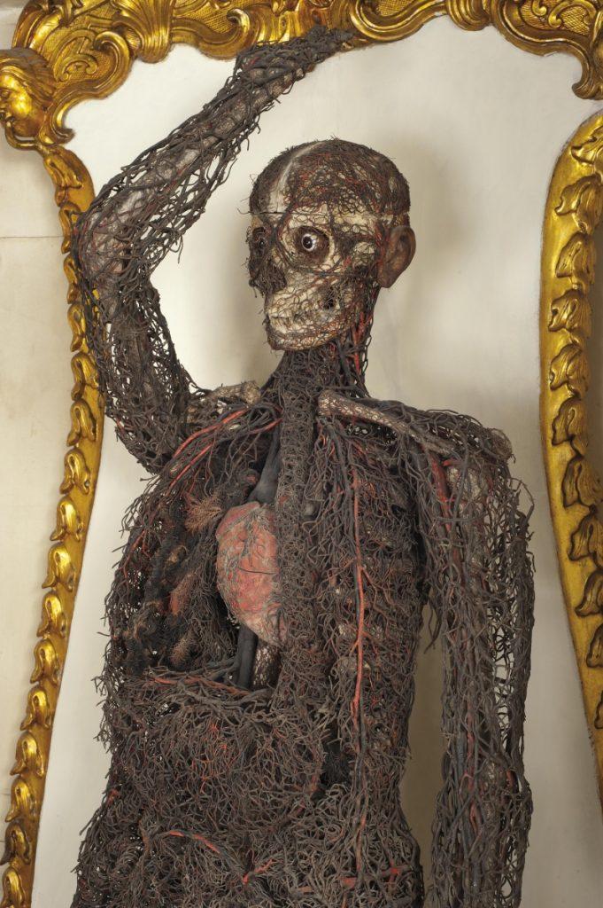 Macchina anatomica donna 1 Cristo velato a Napoli