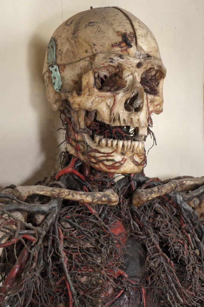 Macchina anatomica uomo  1 Cristo velato a Napoli