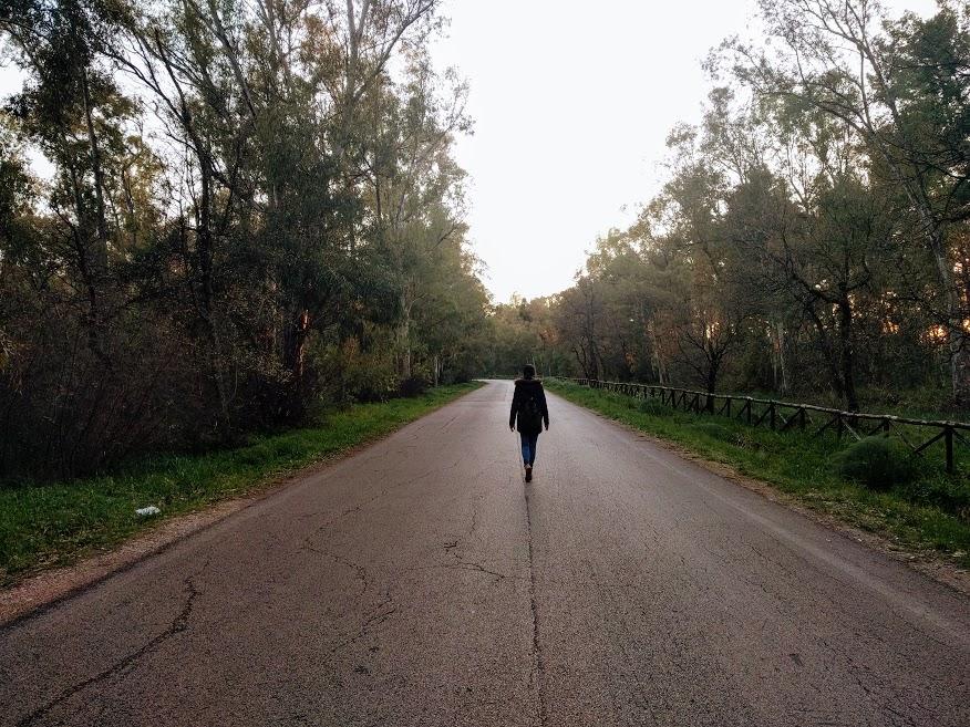 La strada che costeggia il Bosco dell'Incoronata